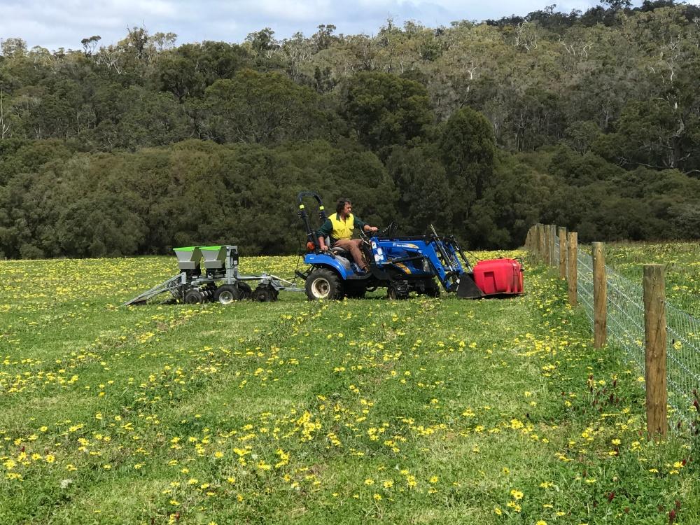 Stewart seeding machine
